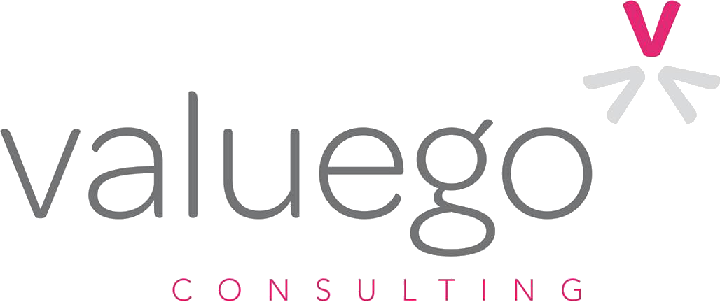 Valuego Consulting